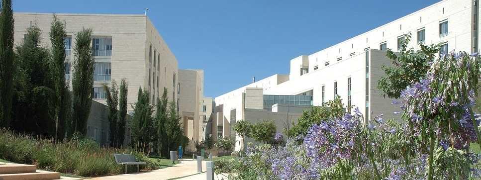 לימודי סוציולוגיה וחינוך באוניברסיטה הפתוחה