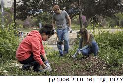 פינה ירוקה בלב: הסטודנטים שפועלים למען החברה ברחבי ירושלים
