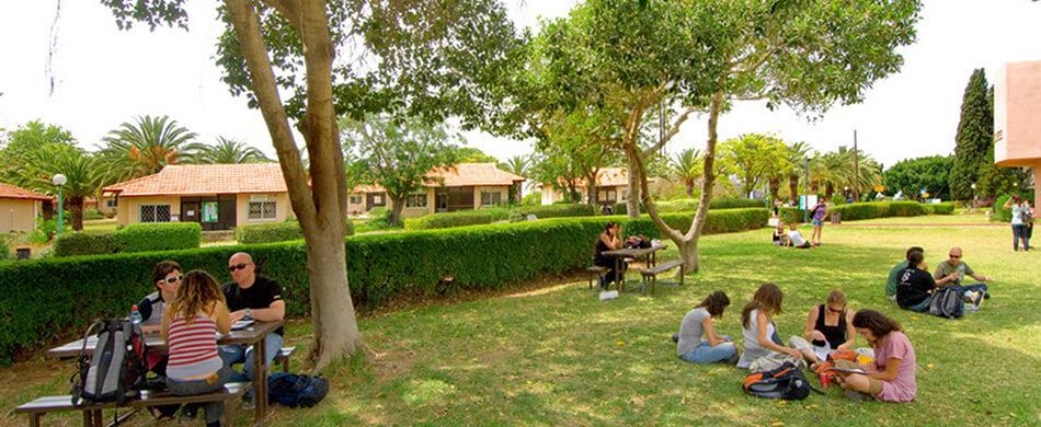 החוג לשפה ולספרות ערבית במכללה האקדמית בית ברל